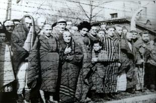 holocausto